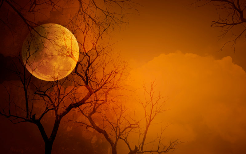 Sppoky Moon in Orange sky